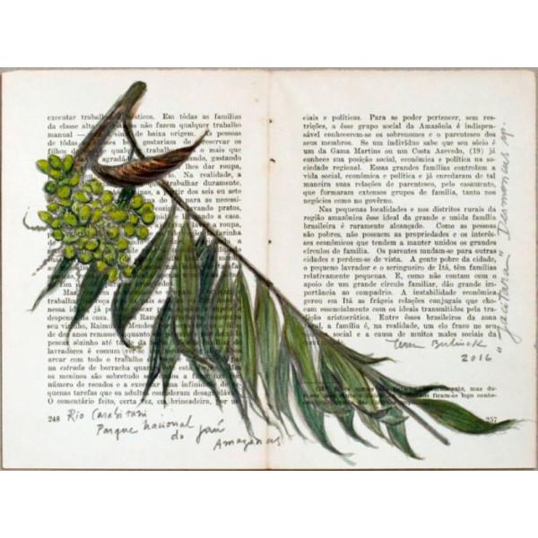 Jacitara (Desenhos do Rio Negro)
